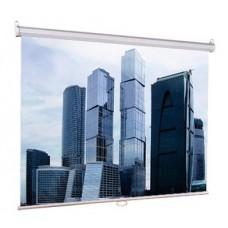 Экран Lumien Eco Picture настенный 160х160 Matte White(LEP-100105)