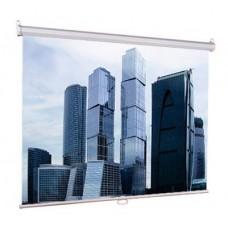 Экран Lumien Eco Picture настенный 150x150см Matte White
