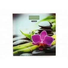 Весы напольные Leran EB9379 01 рисунок/цветы