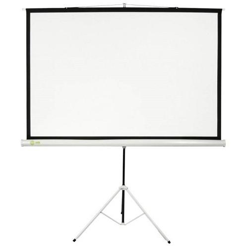 Экран CACTUS Matte White (CS-PST-124X221)