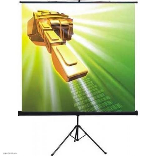 Экран на штативе Digis Kontur-D 1:1, 156x159 см., MW (DSKD-1103)