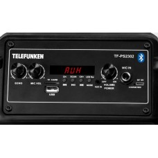 Музыкальный центр TELEFUNKEN TF-PS2302