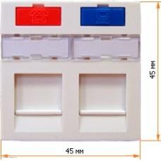 Вставка Lanmaster 45x45 на 2 кейстоуна, со шторкой, маркировкой и иконками, белая