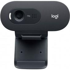 Камера Web Logitech WebCam C505e черный 2Mpix USB2.0 с микрофоном для ноутбука