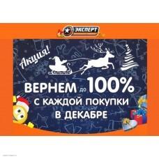 """Вернем до 100%  """"Только в декабре в магазинах Эксперт"""""""